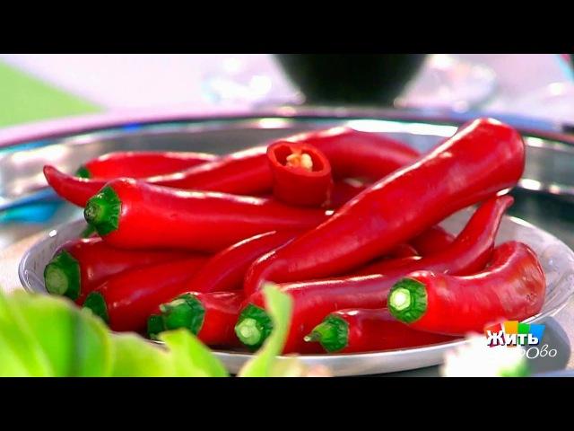 Супер еда для мужского достоинства Жить здорово 22 02 2017