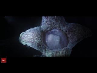 Facehugger to Alien: Covenant / Лицехват в фильме Чужой: Завет