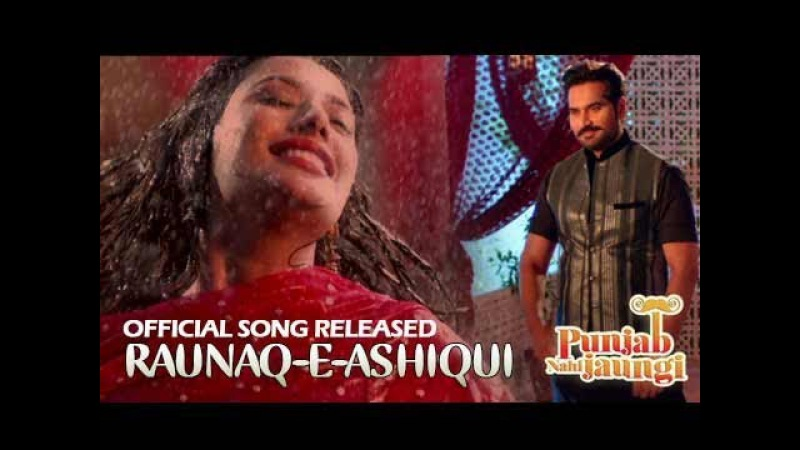 Raunaq-e-Ashiqui | Punjab Nahi Jaungi | ARY Films