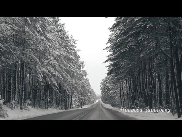 🌠 Дорога Зимой под музыку ~ Красивая Зимняя Дорога в Заснеженном Лесу 🌠