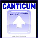Canticum Karaoke - La Camisa Negra