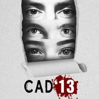 CAD13