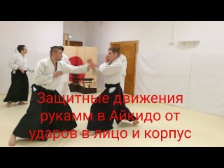 Aikido hand deflection vs two punch(up,down)