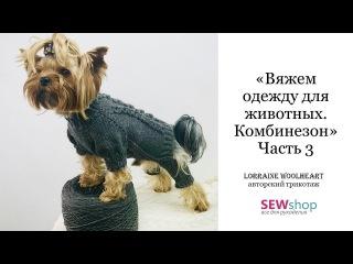Вяжем одежду для животных спицами. Свитер / Комбинезон. Часть 3 вместе с Lorraine Woolheart