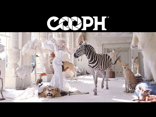 Visual QA with Miss Aniela – COOPH photo stories