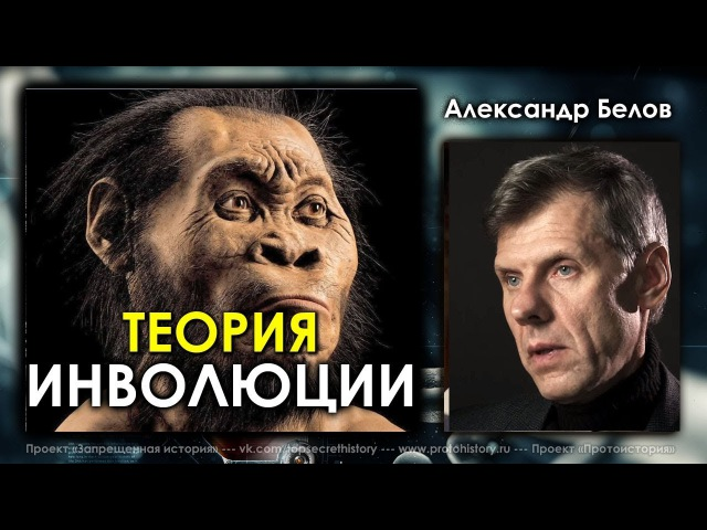 Александр Белов Теория инволюции