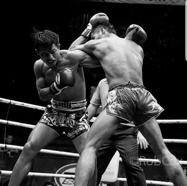 Тайский бокс квадрат марьино фото