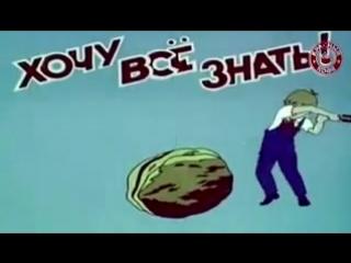 Советский киножурнал «Хочу всё знать» заставка «Орешек знаний тверд, но » 1