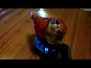 Dansk ff duck tape challenge hogtie red blondie