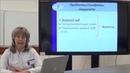 Лекция Первичный билиарный холангит современные подходы к диагностике и лечению