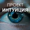 Проект Интуиция