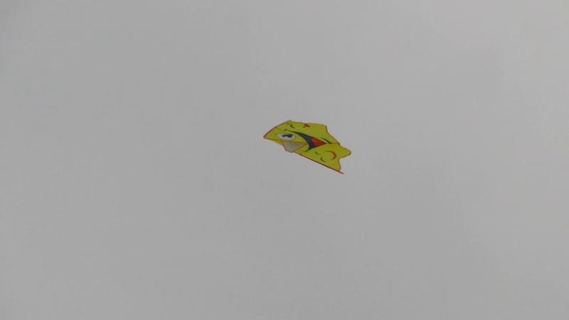 Фестиваль воздушных змеев в Бенёво. Смельчак и ветер. Палкинский район. 2018г.