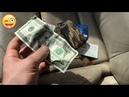 Нашел деньги на автосвалке в Америке дневной заработок 100$