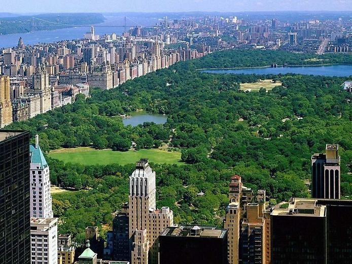 Что стоит посетить в Нью-Йорке, изображение №6