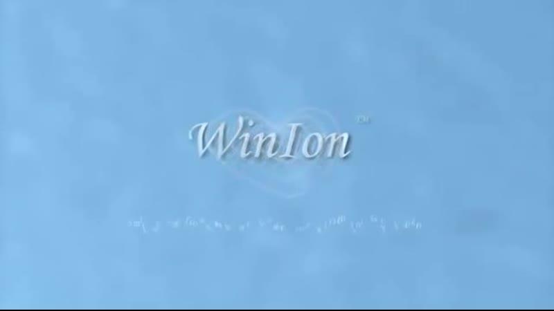 Winalite Анионовые прокладки WinIon