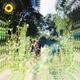 Unknown - _ _ _ _Rex Orange County-Sunflower-kissvk.com
