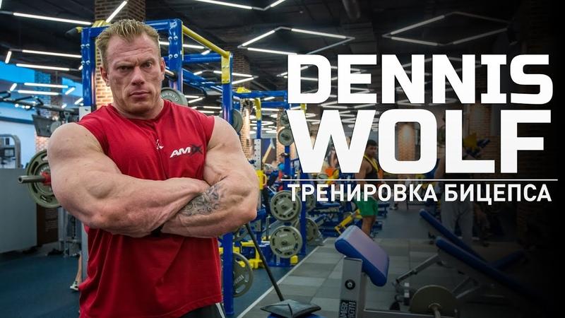 Мастер класс Dennis Wolf Тренировка бицепса