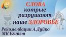 Рекомендации по здоровью от целителя и эзотерика Андрея Дуйко МК Египет
