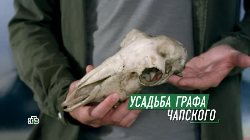 Мухтар. Новый след - 2 сезон - 48 серия - Усадьба графа Чапского
