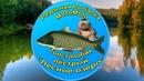 Как поймать Пёстрого толстолобика на Лесном озере Реальная Рыбалка