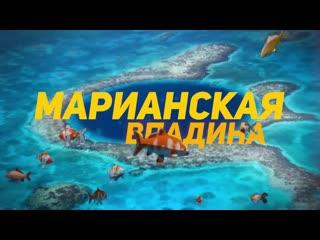 Интересное видео №49 - 11 Самых Удивительных Обитателеи Марианскои Впадины