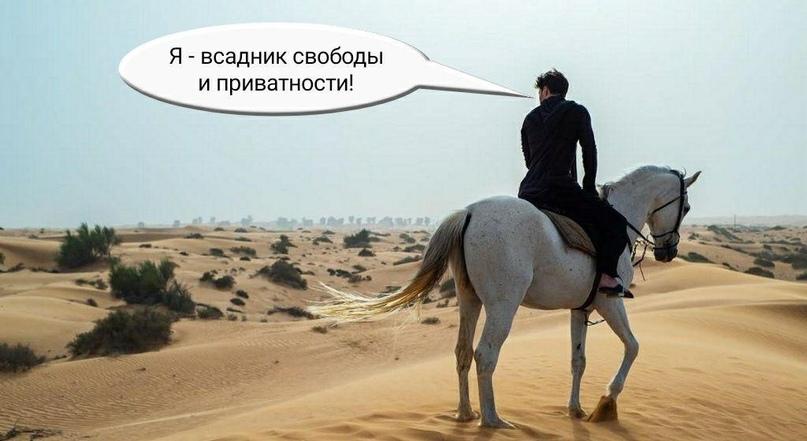 Дуров vs Цукерберг, изображение №6