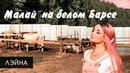 Лэйна Малай на белом Барсе официальный клип