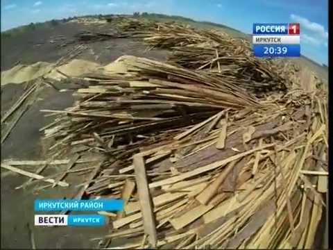 Древесные отходы угрожают экологии Иркутского района Вести Иркутск