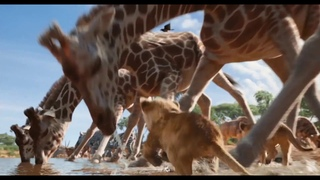 The Lion King 2019 -  Trailer