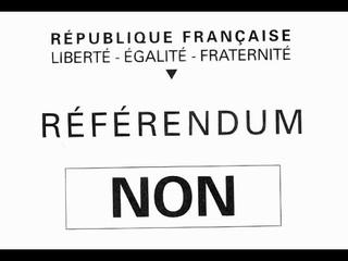 Référendum ADP et  Nationalisations à la pelle