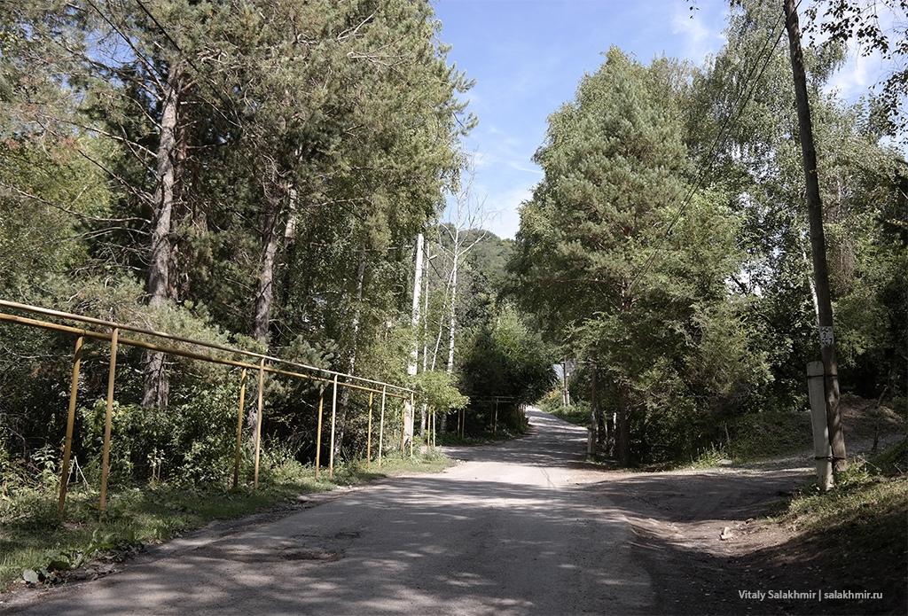 Березовая роща Алматы, пешком 2019