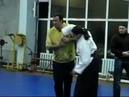 Steven Seagal Aikido - Sankyo