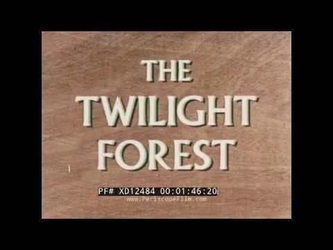 1957 UNILEVER INDUSTRIAL FILM TIMBER INDUSTRY IN NIGERIA AFRICA XD12484