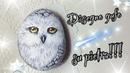 Disegno gufo su pietra How to draw owl Disegni su pietra Art