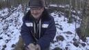 Почти охота с Русской гончей 18 01 20