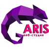 Веб-студия AriS