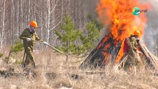 В Зауралье органы РС ЧС отрабатывают навыки по тушению природных пожаров и защите населённых пунктов