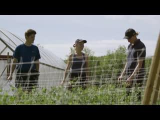 История густава, фермера-вегана // stories from sweden