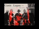 CANIS LUPUS Body Electric The Sisters Of Mercy Cover