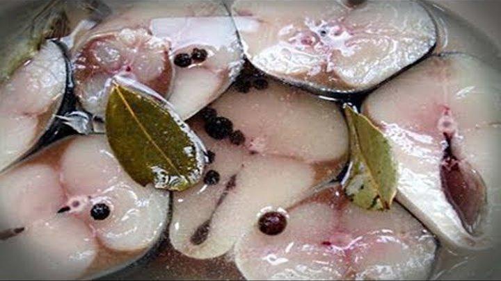 Маринованная скумбрия по-новому. Вкуснее красной рыбы!