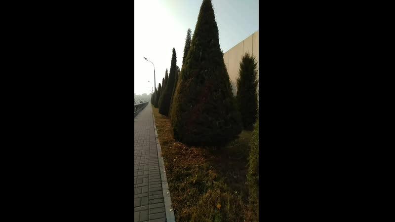 Ташкент каласы