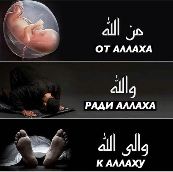 Аллах велик картинка