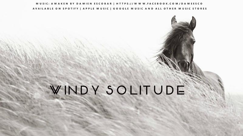 Windy Solitude Drew Doggett