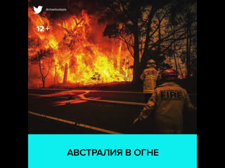 Пожары в Австралии  Москва 24