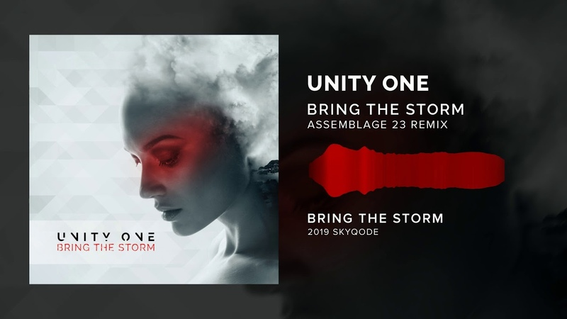 Unity One - Bring The Storm (Assemblage 23 Remix)
