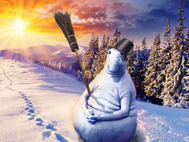 картинки ждем зиму прикольные уходят теми