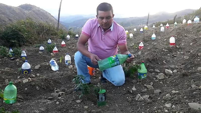 RIEGO SOLAR EN CAJAMARCA PERÚ