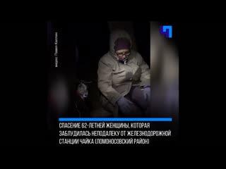 Ленинградские поисковики нашли 62-летнюю женщину, полтора дня блуждавшую в лесу