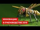 Новинки пчеловодства 2019 ТОП 15 новинок