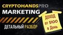 🛑CRYPTOHANDS MARKETING Криптохендс Подробный Маркетинг план [ Заработок Доход от $100 в День]